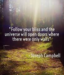 follow_your_bliss