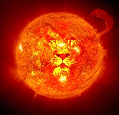 lion_in_sun
